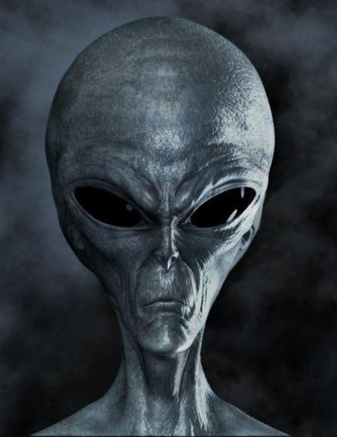 Grey Alien Face